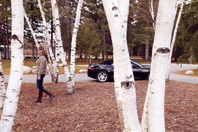 Chevy Camaro in Kleinburg, Ontario