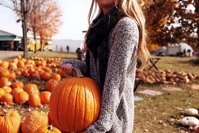 Pumpkin Picking at Round the Bend Farm