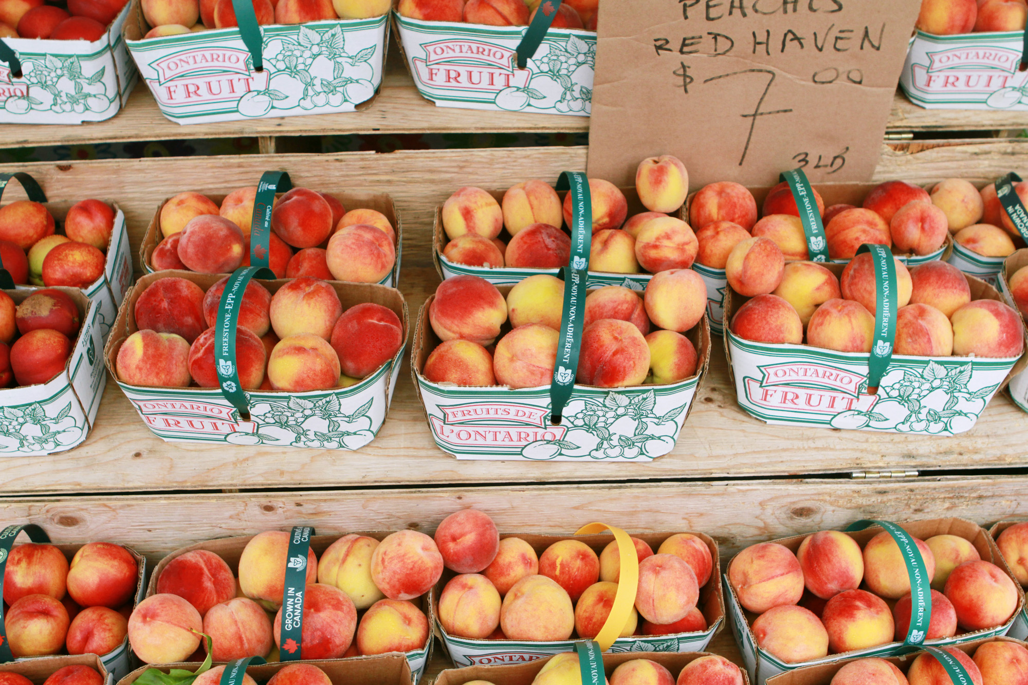 Newmarket Farmer's Market fresh fruit