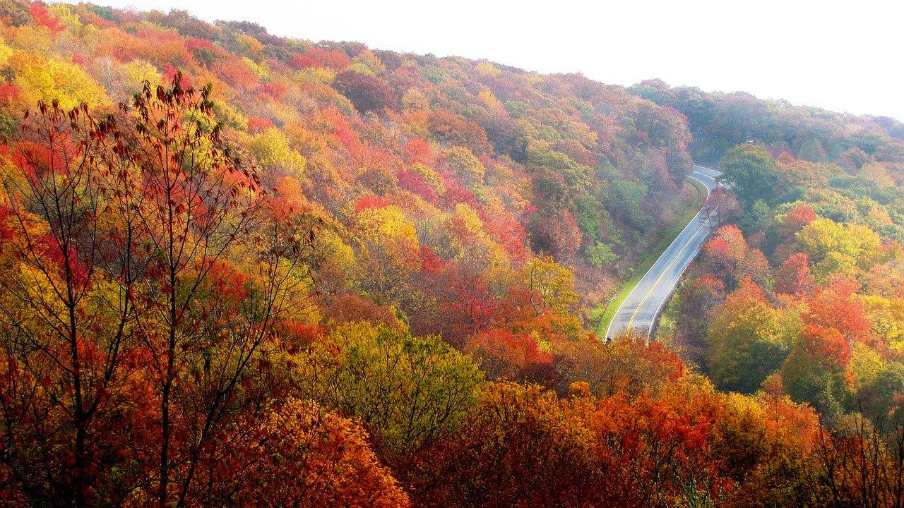 3 great Muskoka road trip ideas