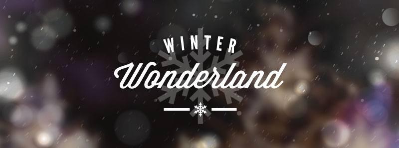 Newmarket Winter Wonderland
