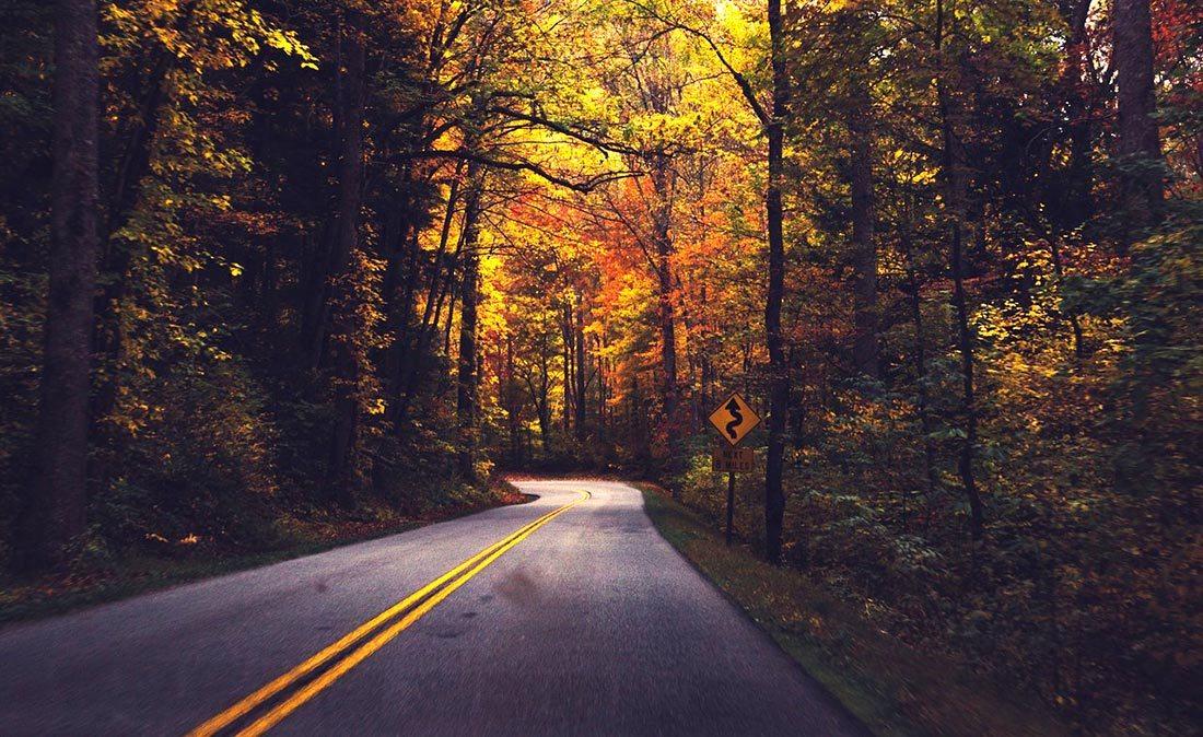 Muskoka driving tips